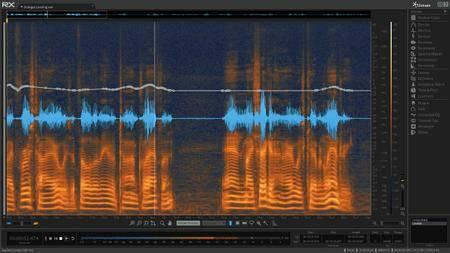 iZotope RX 6 Audio Editor Advanced v6.10 WiN