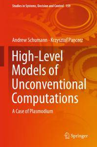 High-Level Models of Unconventional Computations A Case of Plasmodium