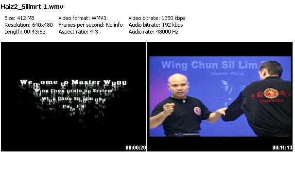 Michael Wong - Wing Chun: Sil Lim Tao (2008)