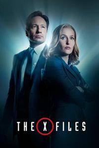 X-Files : Aux frontières du réel S11E08