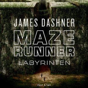 «Maze Runner - Labyrinten» by James Dashner