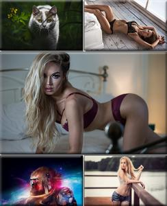 LIFEstyle News MiXture Images. Wallpapers Part (1517)